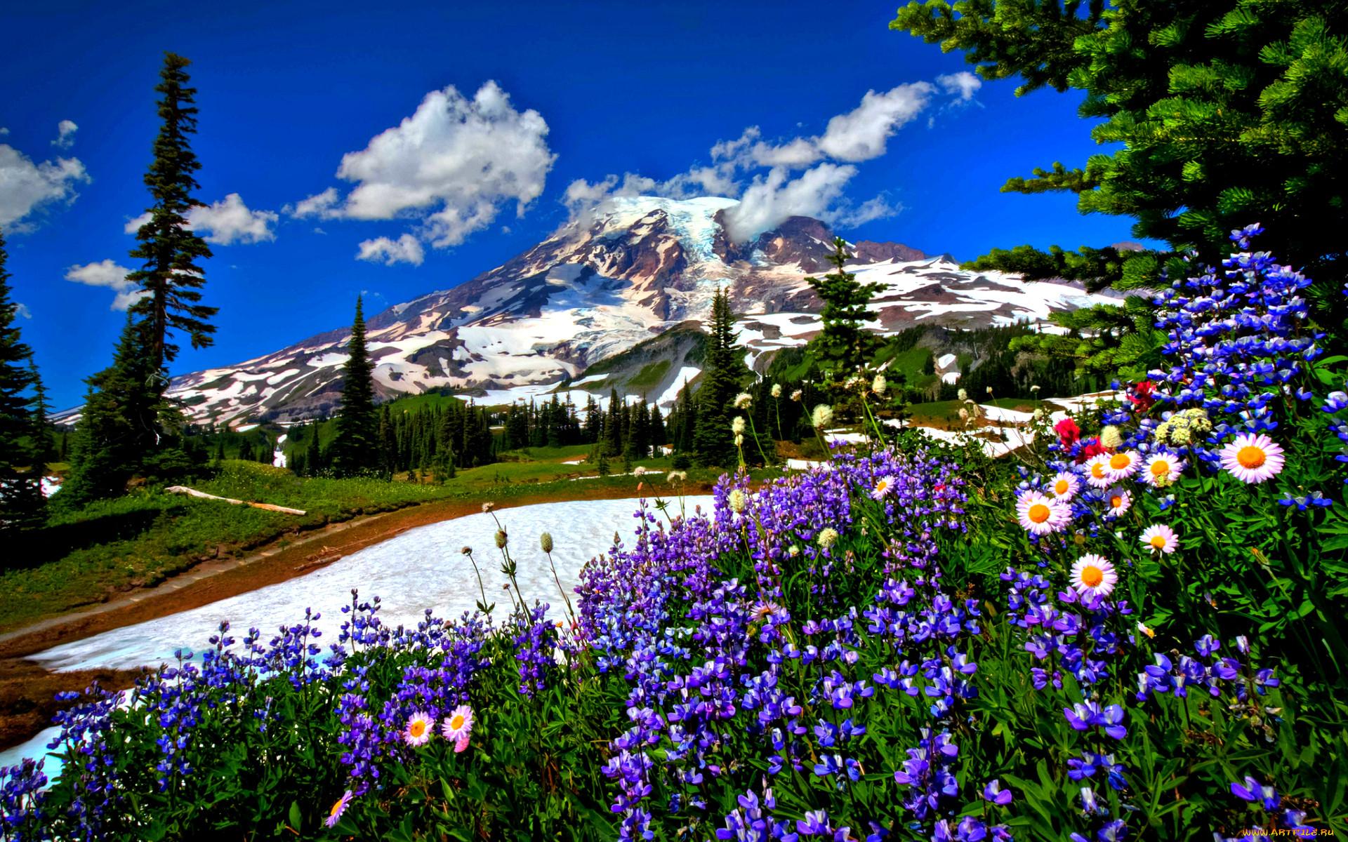 своему фото весенних горных пейзажей удобные садовые беседки